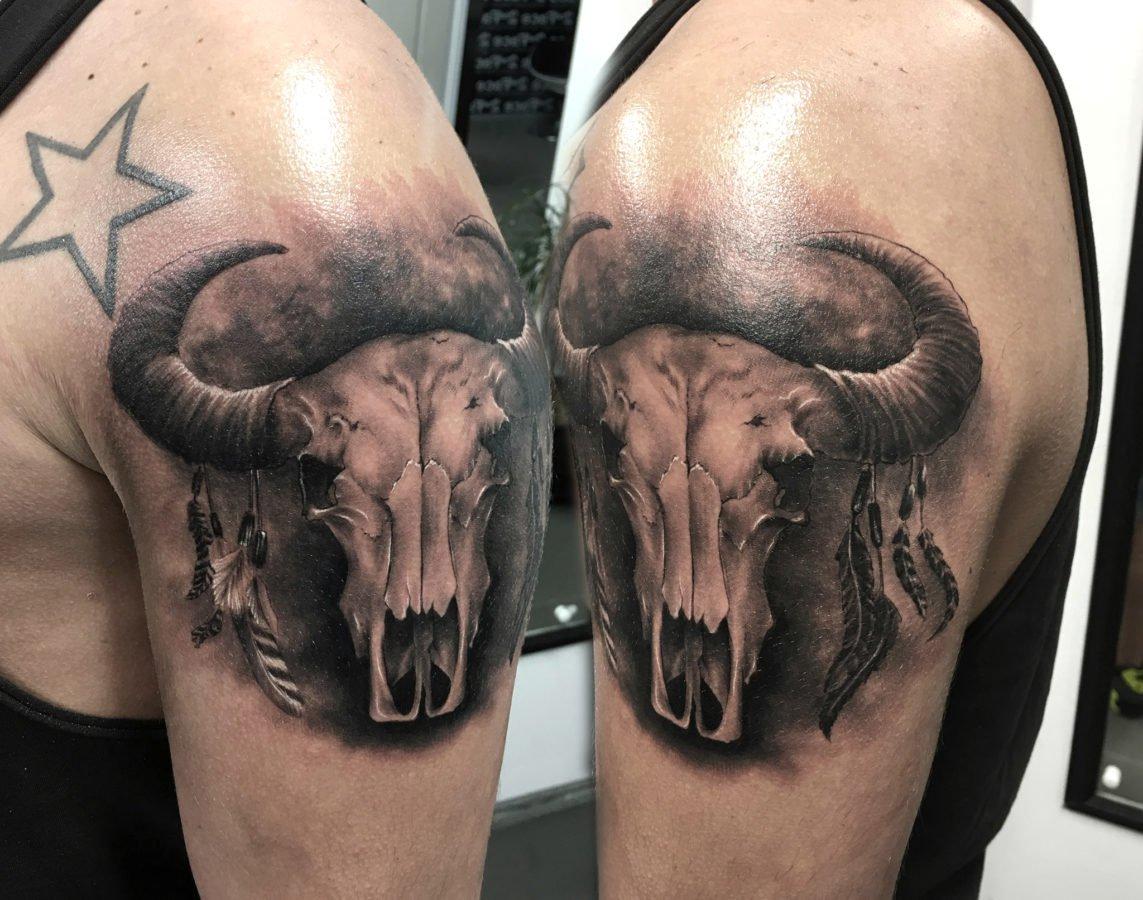 craniu-animal-pene